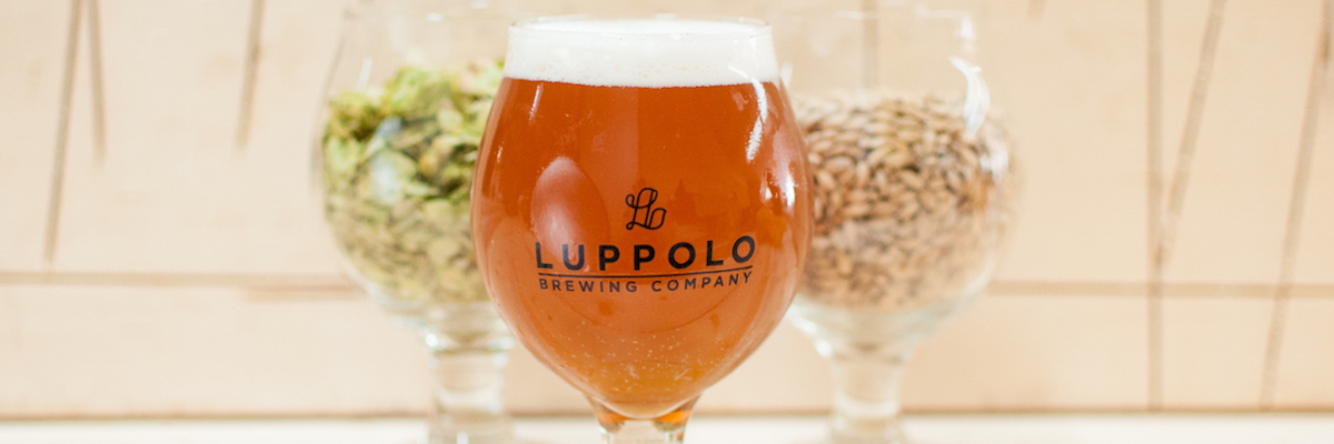 luppolo-beer-front
