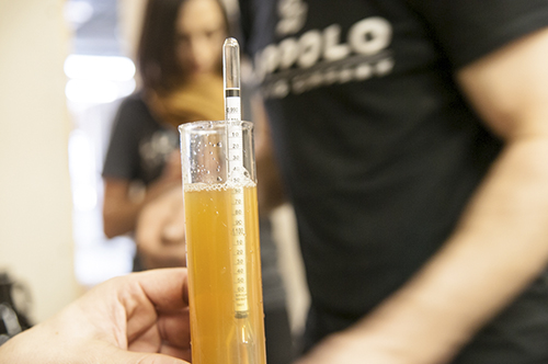 Luppolo Brewing