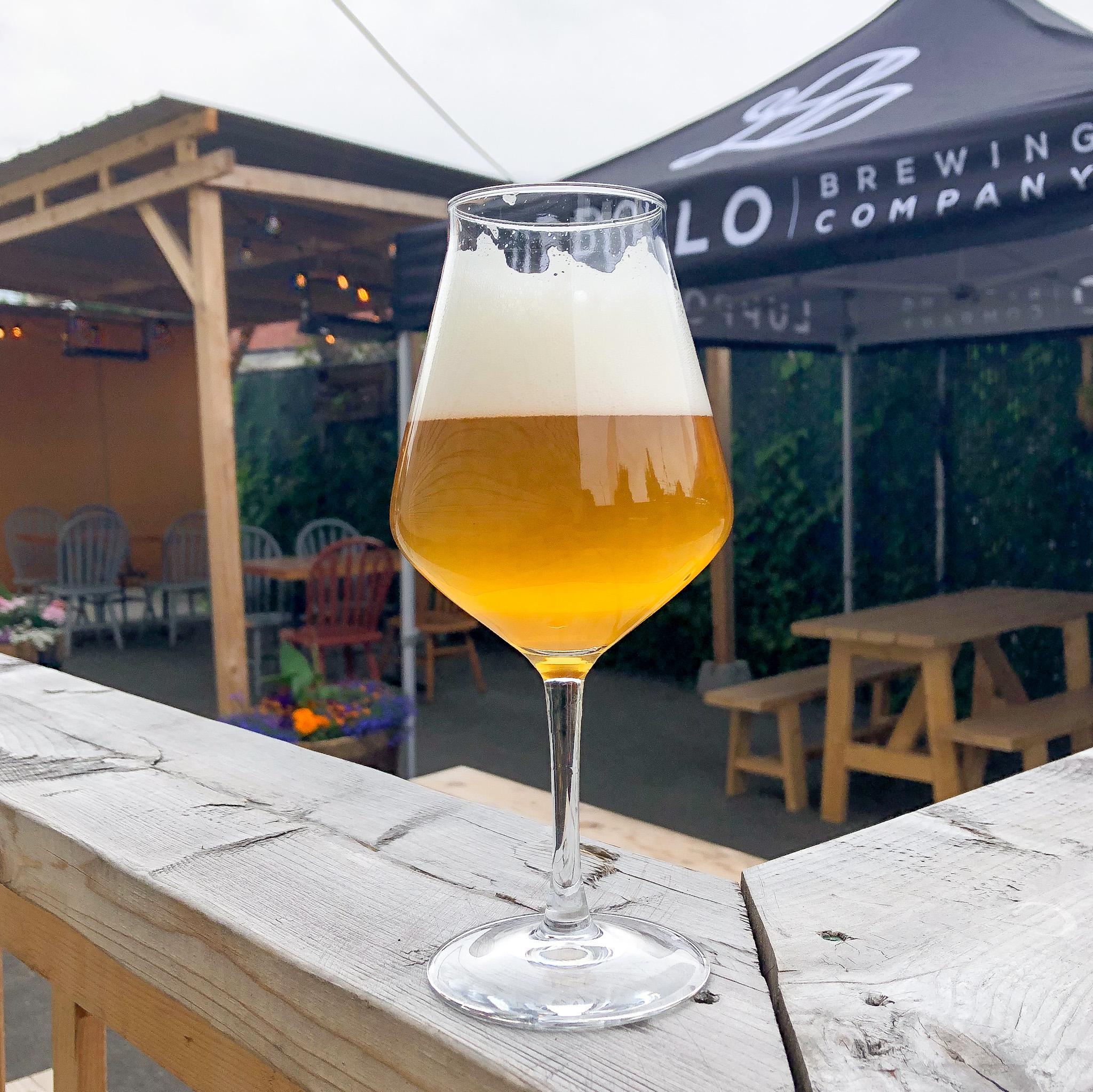 Sogni D'Oro Single Barrel Aged Golden Ale