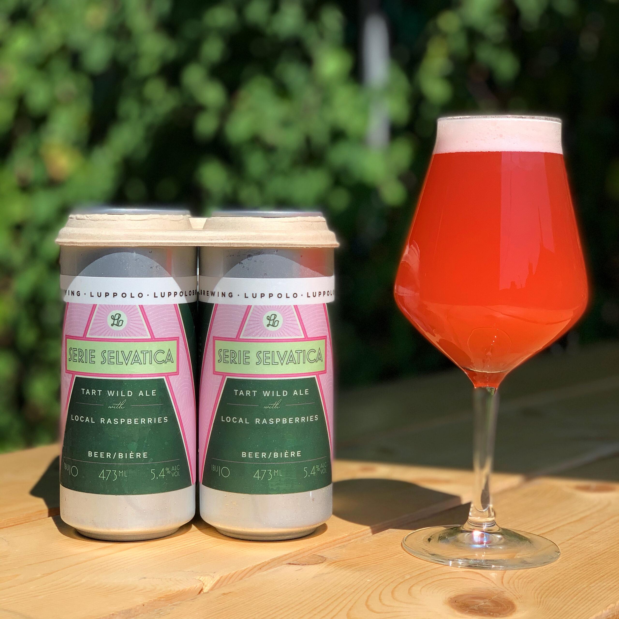 Tart Wild Ale with Raspberry
